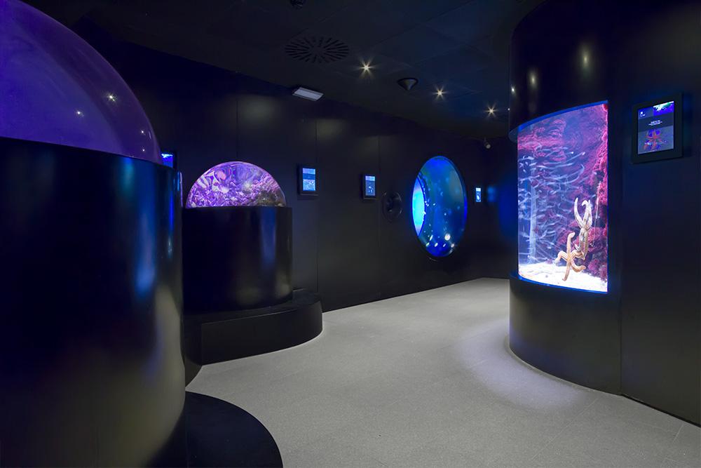 proyecto_aquarium_03